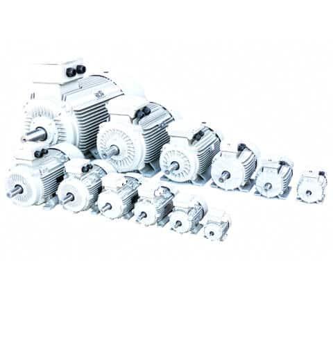 IE3  asynchronous motors