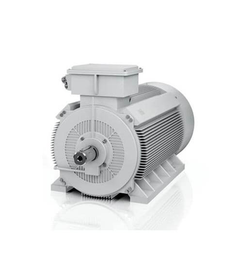 Low Voltage large electric motors