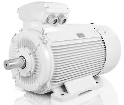 Low voltage motors 55kW