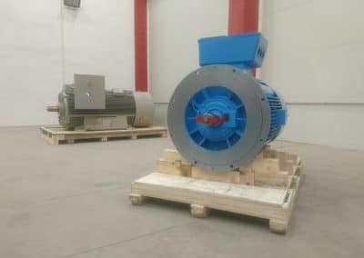 vertical electric motors